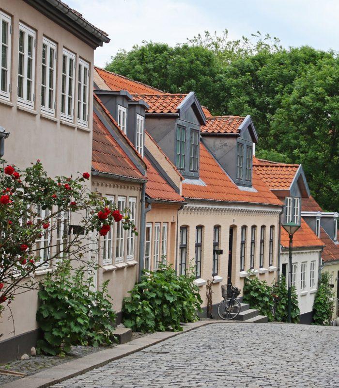 architecture-cobblestone-street-daylight-772177.jpg